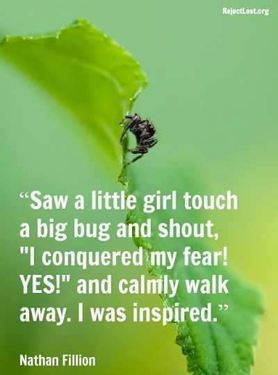 Quotes About Overcoming Fear Overcoming Fear Quotes...