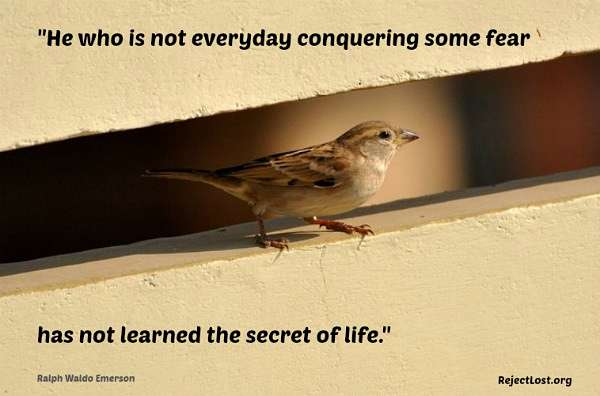 Conquering fear quotes: He who is not everyday conquering some fear ...